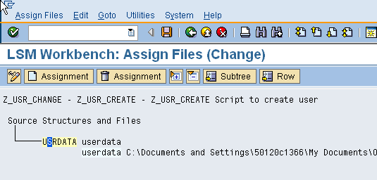 lsmw - assign files